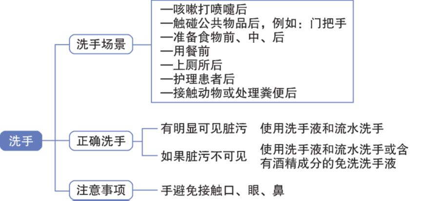 图4:正确洗手指导原则